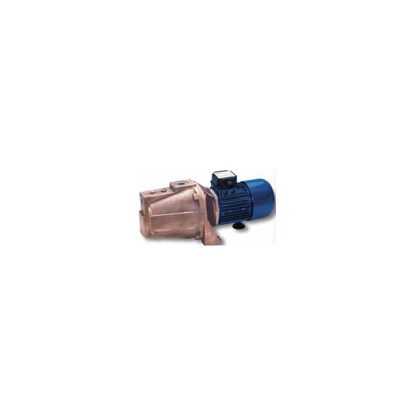 ELETTROPOMPA 0.8 HP - 0.60 KW - 24V