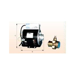 Motor and circulation pump