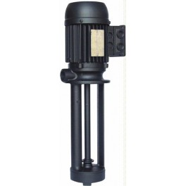 Immersion Pumps